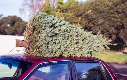 Hitting the Road This Holiday Season?